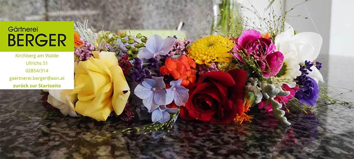 Gaertnerei Berger, Ullrichs, Waldviertel, Kirchberg am Walde, Blumen, Garten, Hortensien, Ihr Spezialist für Pflanzen, Blumen und Floristik,